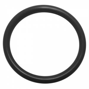 O-ring zu Unterwasserscheinwerfer Astral